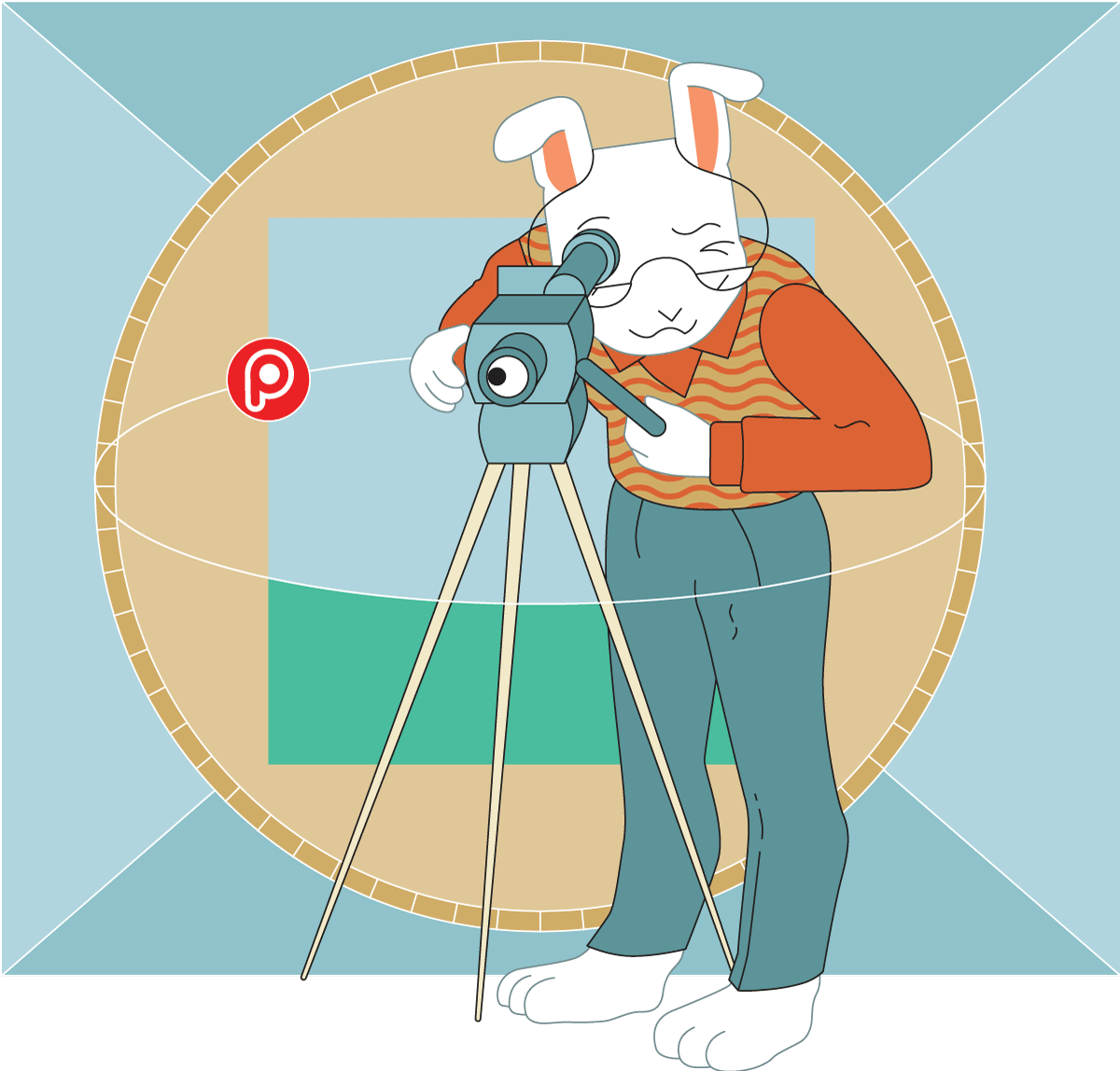 Cartoon of the Pooka rabbit taking a careful look through a camera lens
